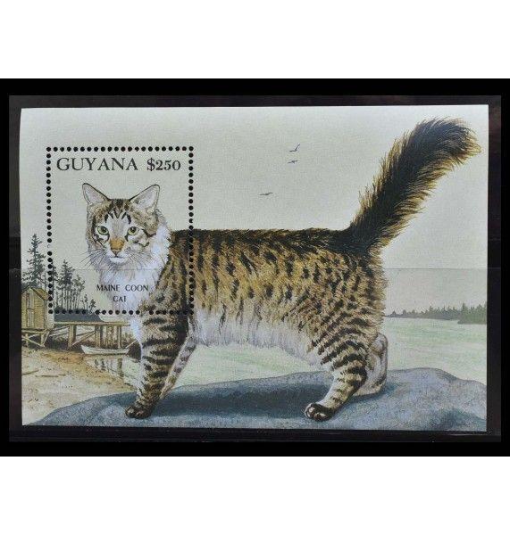 """Гайана 1992 г. """"Кошки, мейн-кун"""""""