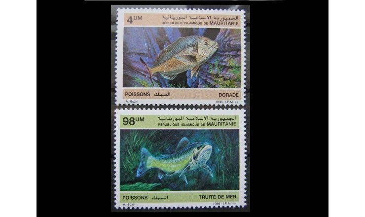 """Мавритания 1986 г. """"Морские рыбы"""""""