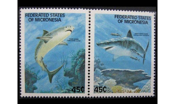 """Микронезия 1989 г. """"Акулы"""""""