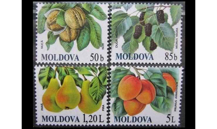 "Молдавия 2009 г. ""Фрукты"""