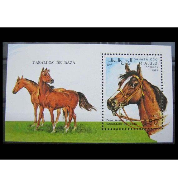 """Сахара 1993 г. """"Лошади"""""""