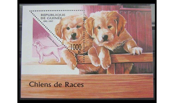 """Гвинея 1997 г. """"Собаки"""""""