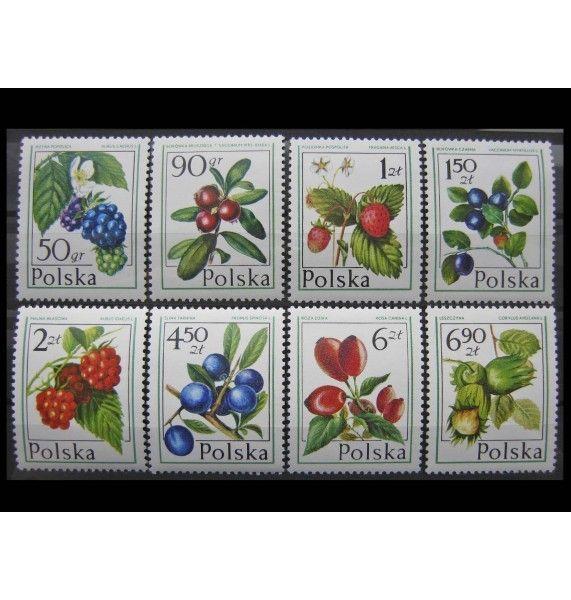 """Польша 1977 г. """"Лесные фрукты и ягоды"""""""