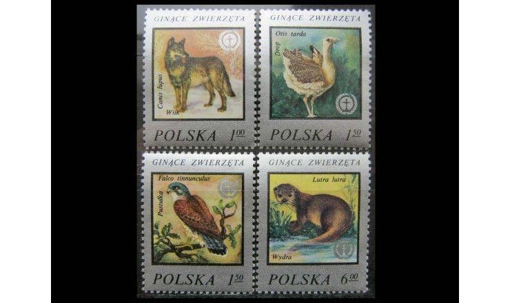 """Польша 1977 г. """"Редкие животные"""""""