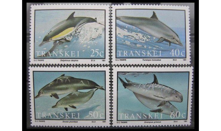 """Транскей 1991 г. """"Дельфины"""""""