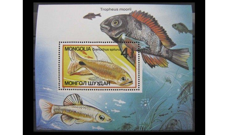 """Монголия 1987 г. """"Декоративные рыбы"""""""