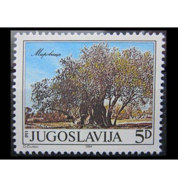 """Югославия 1984 г. """"Старейшее оливковое дерево в Мировице"""""""