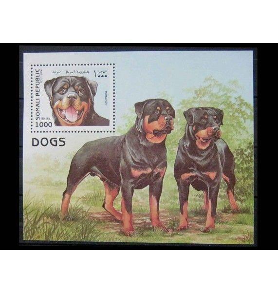 """Сомали 1997 г. """"Собаки"""""""