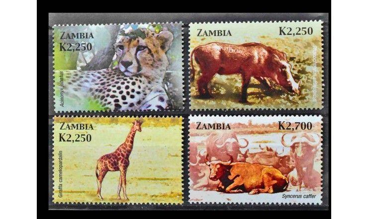"""Замбия 2005 г. """"Африканские млекопитающие"""""""