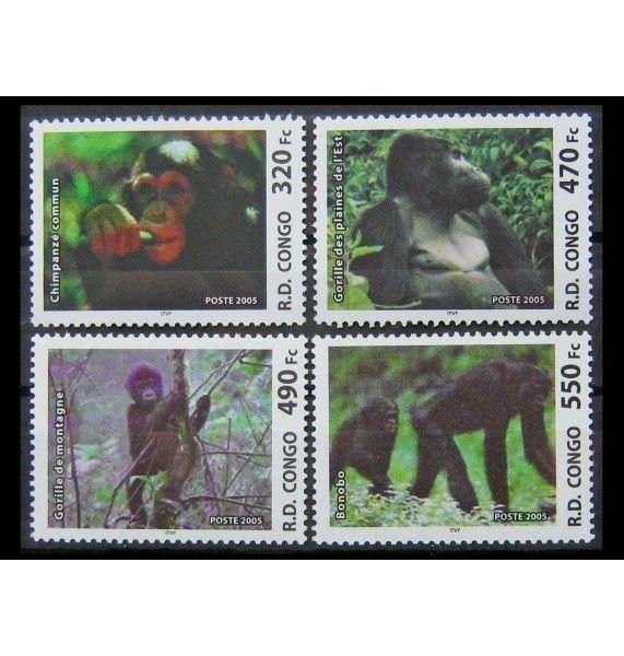 "ДР Конго 2005 г. ""Обезьяны"""