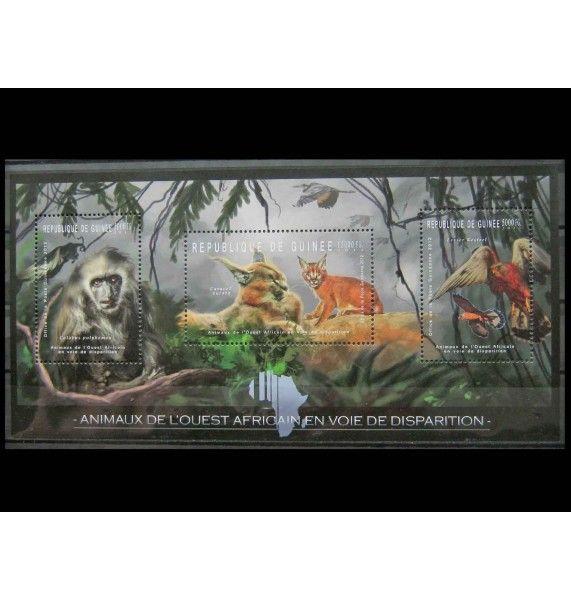 """Гвинея 2012 г. """"Редкие животные Западной Африки"""""""