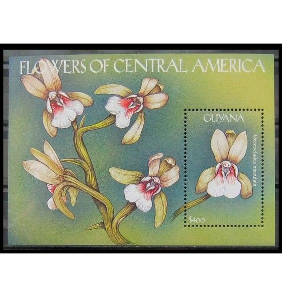"Гайана 2000 г. ""Орхидеи"""