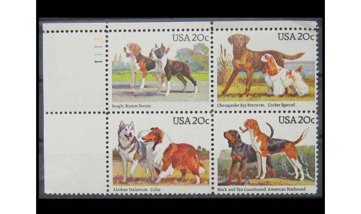 """США 1984 г. """"Охотничьи собаки"""""""