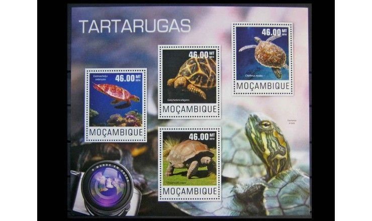 """Мозамбик 2014 г. """"Черепахи"""""""