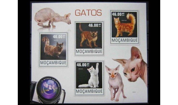 "Мозамбик 2014 г. ""Кошки"""