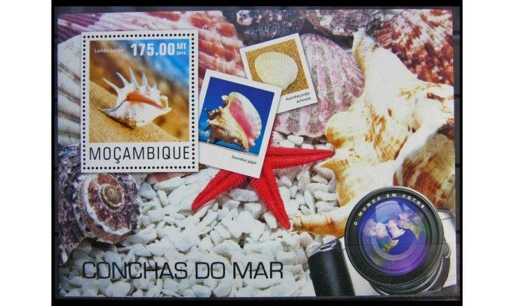 """Мозамбик 2014 г. """"Морские ракушки"""""""
