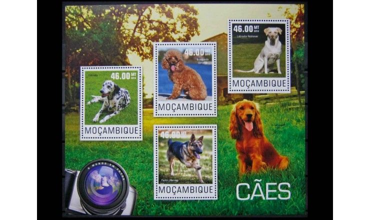 "Мозамбик 2014 г. ""Собаки"""