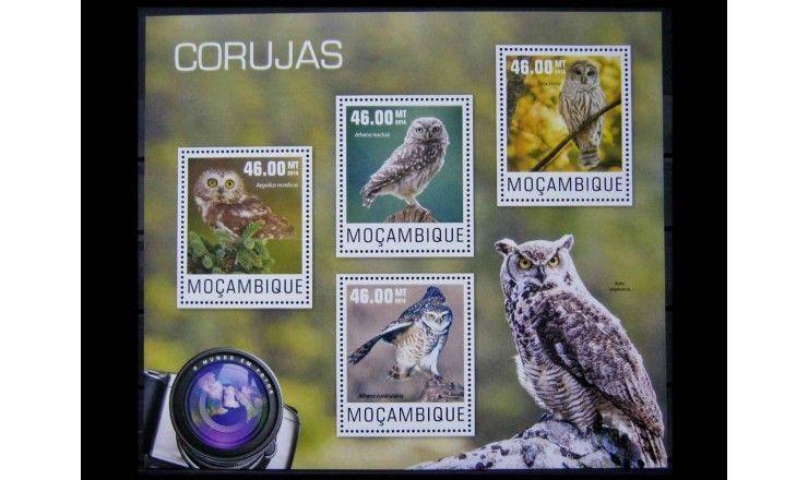 """Мозамбик 2014 г. """"Совы"""""""
