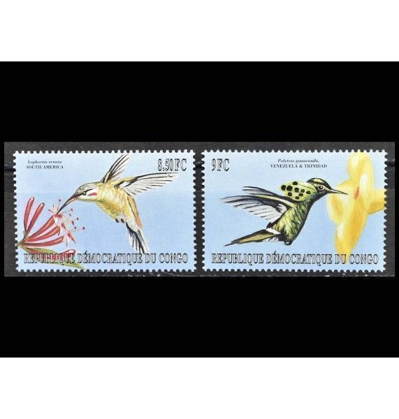 """ДР Конго 2000 г. """"Мелкие птицы американского континента"""""""