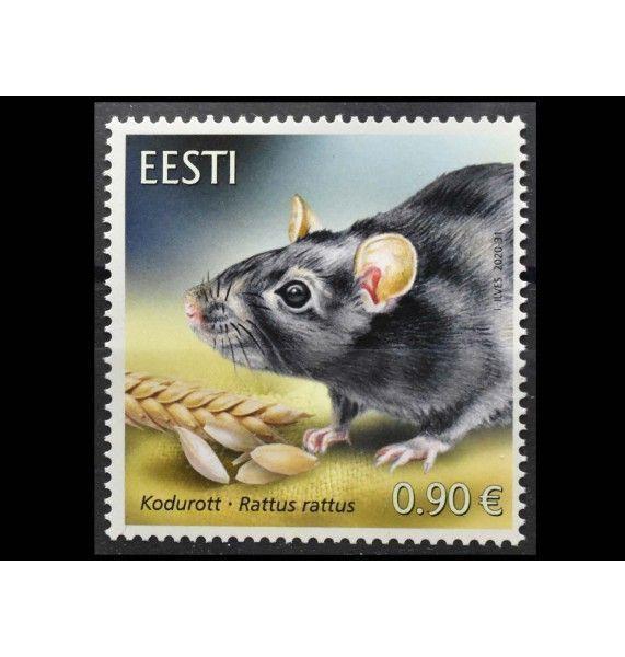 """Эстония 2020 г. """"Эстонская фауна-домашняя крыса"""""""