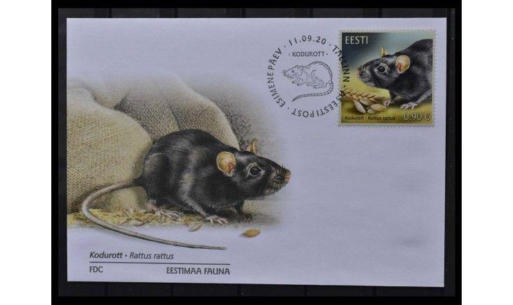 """Эстония 2020 г. """"Эстонская фауна-домашняя крыса"""" FDC"""