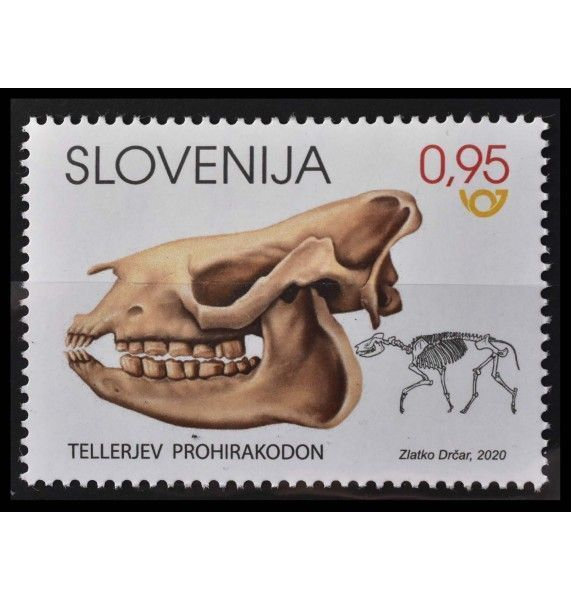 """Словения 2020 г. """"Ископаемые млекопитающие Словении-Прогиракодон теллери"""""""
