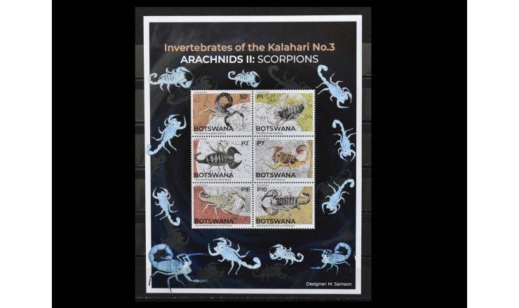 """Ботсвана 2021 г. """"Беспозвоночные Калахари Паукообразные: Скорпионы"""""""