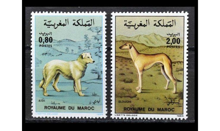 """Марокко 1984 г. """"Животные - Породы собак"""""""