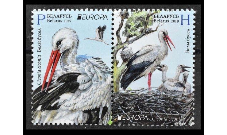 """Белоруссия 2019 г. """"EUROPA. Национальные птицы"""""""