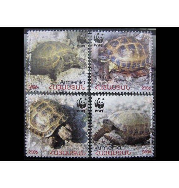 """Армения 2007 г. """"Среднеазиатская черепаха"""""""