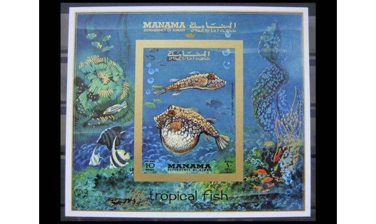 """Манама 1971 г. """"Тропические рыбы"""""""