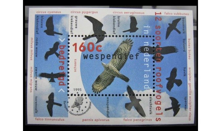 """Нидерланды 1995 г. """"Природа и окружающая среда: Ловчие птицы"""""""